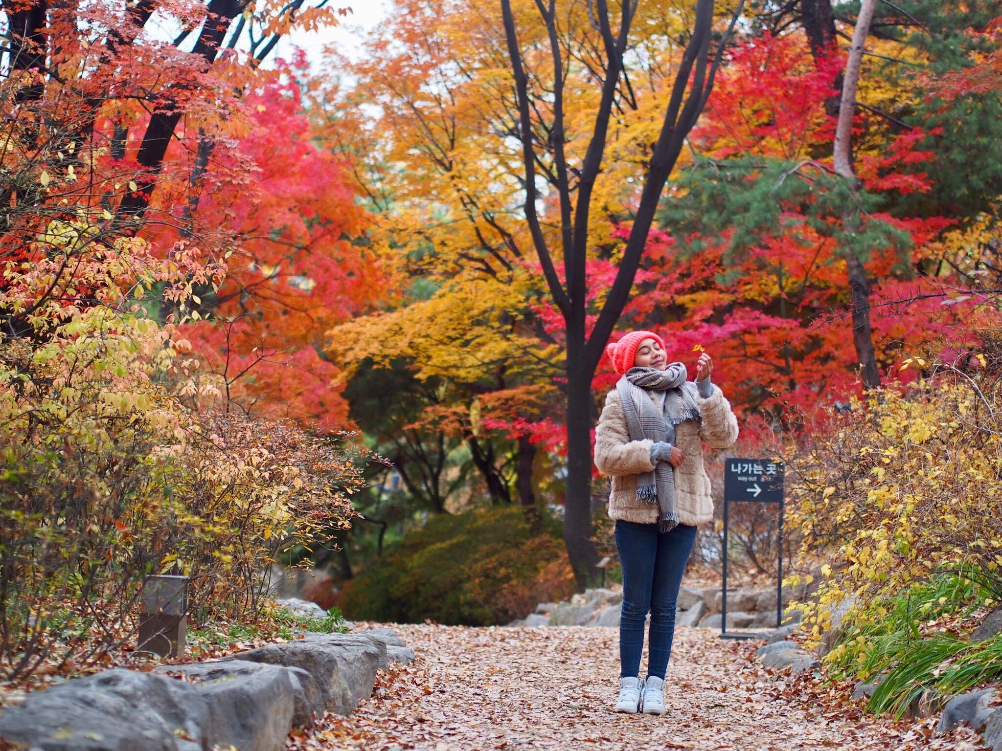 Autumn Di Korea Pasti Buat Anda Geram Nak Ke Sana